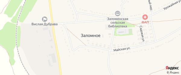 Железнодорожный переулок на карте Заломного села с номерами домов
