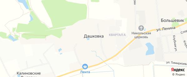 Карта деревни Дашковки в Московской области с улицами и номерами домов