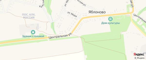 Центральная улица на карте села Яблоново с номерами домов