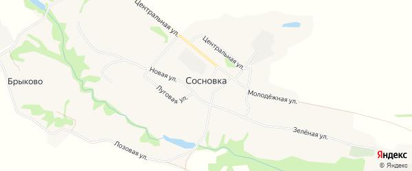 Карта села Сосновки в Орловской области с улицами и номерами домов