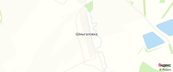 Карта деревни Шмыгаловки в Тульской области с улицами и номерами домов