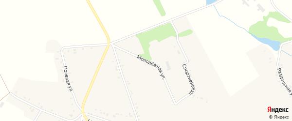 Молодежная улица на карте села Речицы Орловской области с номерами домов