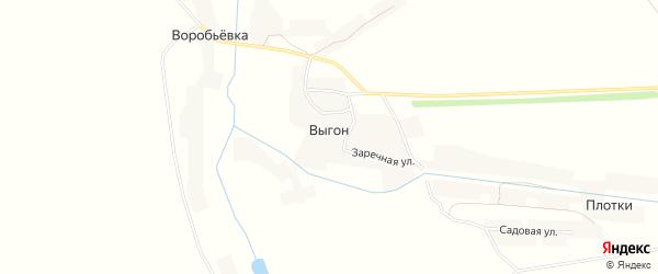 Карта деревни Выгона в Орловской области с улицами и номерами домов