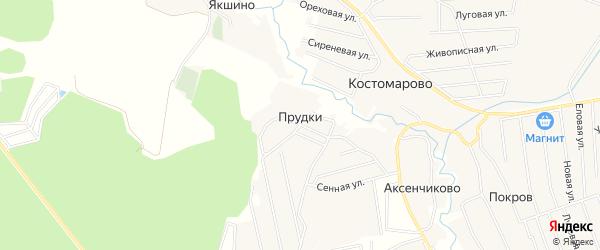 Карта деревни Прудков города Чехов в Московской области с улицами и номерами домов