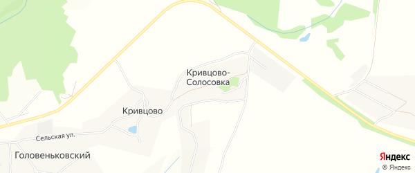 Территория СНТ Дубрава на карте деревни Кривцова-Солосовки Тульской области с номерами домов