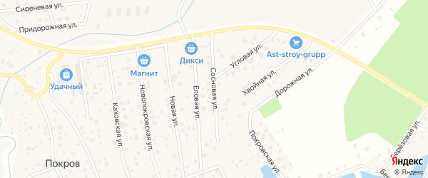 Сосновая улица на карте деревни Покрова с номерами домов