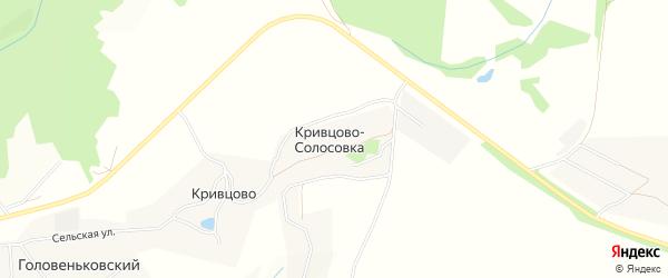 Карта деревни Кривцова-Солосовки в Тульской области с улицами и номерами домов