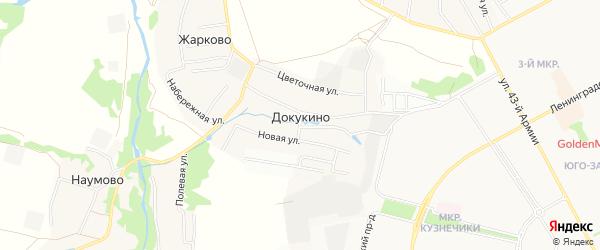 Карта деревни Докукино города Подольска в Московской области с улицами и номерами домов