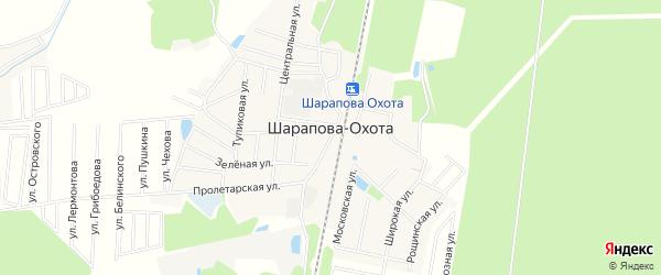 Карта поселка Шараповой-Охоты в Московской области с улицами и номерами домов