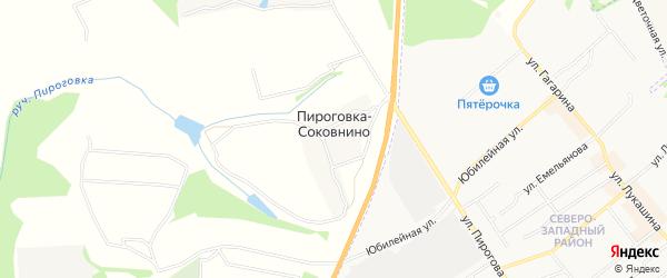 Карта деревни Пироговка-Соковнино в Тульской области с улицами и номерами домов