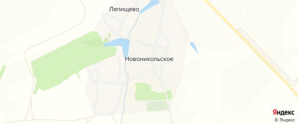 Карта Новоникольского села в Тульской области с улицами и номерами домов