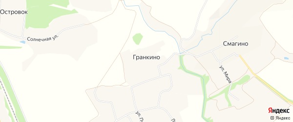Карта деревни Гранкино в Орловской области с улицами и номерами домов