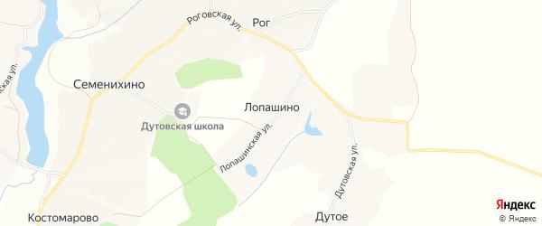 Карта деревни Лопашино в Орловской области с улицами и номерами домов