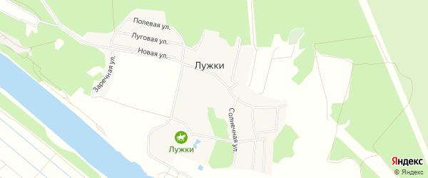 Карта деревни Лужки в Московской области с улицами и номерами домов