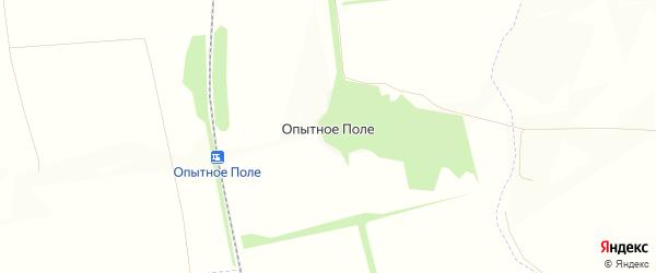 Карта поселка Опытного Поля в Орловской области с улицами и номерами домов