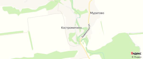 Карта деревни Костромитино в Орловской области с улицами и номерами домов