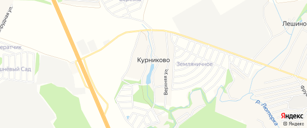 Карта деревни Курниково города Чехов в Московской области с улицами и номерами домов