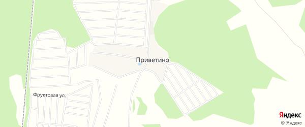 Карта деревни Приветино в Московской области с улицами и номерами домов