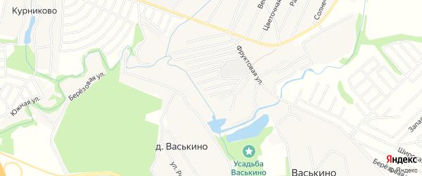 Карта деревни Васькино города Чехов в Московской области с улицами и номерами домов