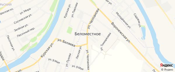 Карта слободы Беломестного в Орловской области с улицами и номерами домов
