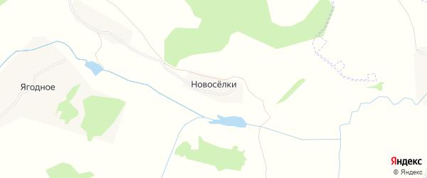 Карта деревни Новоселки в Тульской области с улицами и номерами домов
