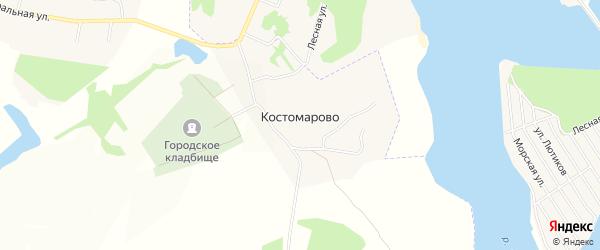 Карта села Костомарово в Тульской области с улицами и номерами домов