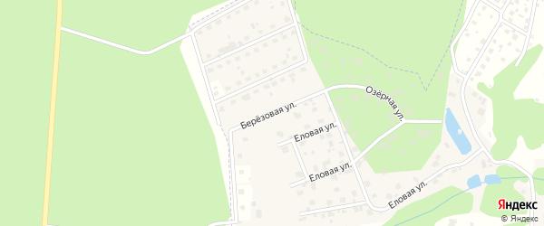 Березовая улица на карте деревни Прохорово с номерами домов
