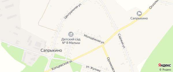 Молодежная улица на карте села Сапрыкино Белгородской области с номерами домов