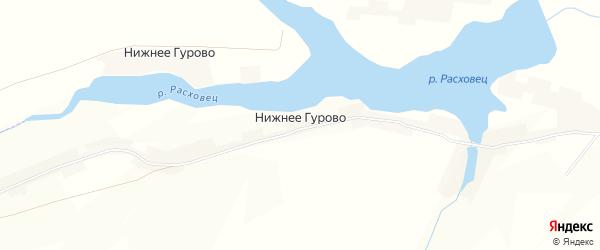 Карта села Нижнее Гурово в Курской области с улицами и номерами домов