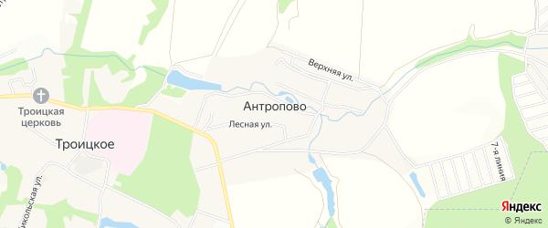 Карта деревни Антропово города Чехов в Московской области с улицами и номерами домов