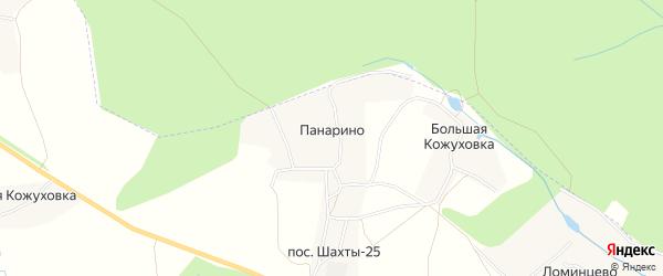 Карта деревни Панарино в Тульской области с улицами и номерами домов