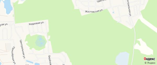 Территория Победа на карте городского округа Мытищи Московской области с номерами домов