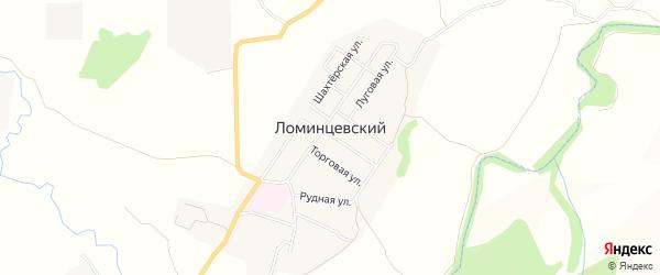 Карта Ломинцевского поселка в Тульской области с улицами и номерами домов