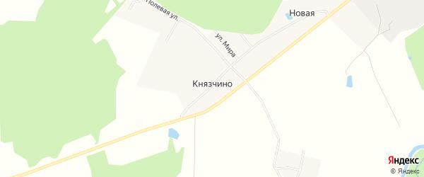 Карта деревни Князчино в Московской области с улицами и номерами домов