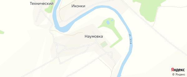 Карта деревни Наумовки в Тульской области с улицами и номерами домов