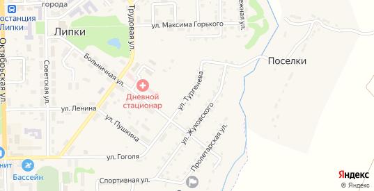 Улица Тургенева в Липки с номерами домов на карте. Спутник и схема онлайн