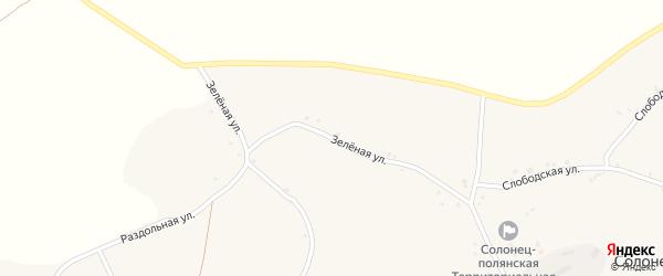 Зеленая улица на карте села Солонца-Поляны Белгородской области с номерами домов