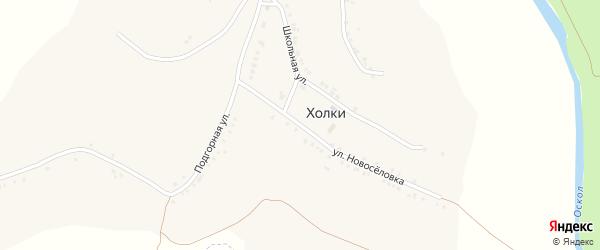Улица Новоселовка на карте села Холки с номерами домов
