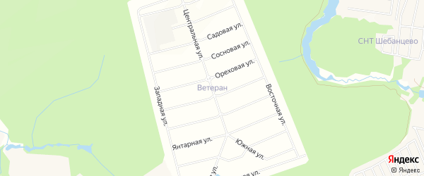 Дачное некоммерческое партнерство Чеховское подворье на карте деревни Покрова с номерами домов