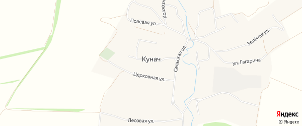 Карта села Кунача в Орловской области с улицами и номерами домов