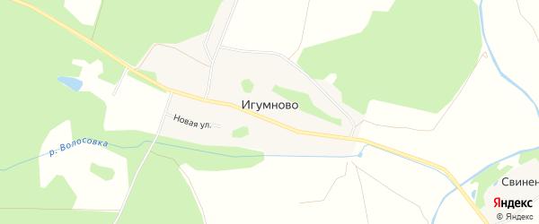 Карта села Игумново в Московской области с улицами и номерами домов