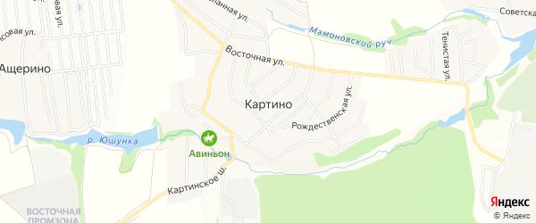 Территория ТИЗ Картино-3 на карте деревни Картино Московской области с номерами домов