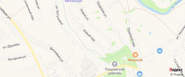 Новый переулок на карте села Федосеевки с номерами домов