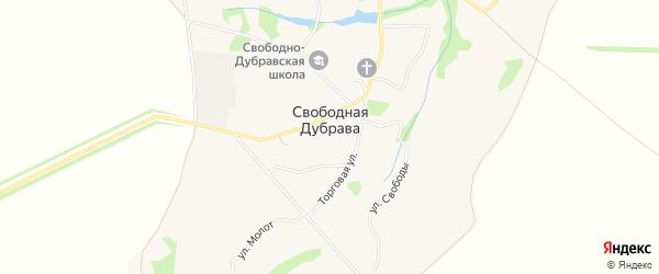 Карта села Свободной Дубравы в Орловской области с улицами и номерами домов