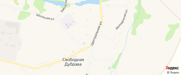 Огородный переулок на карте села Свободной Дубравы Орловской области с номерами домов