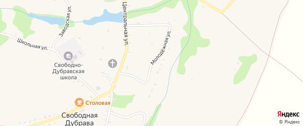 Молодежная улица на карте села Свободной Дубравы Орловской области с номерами домов