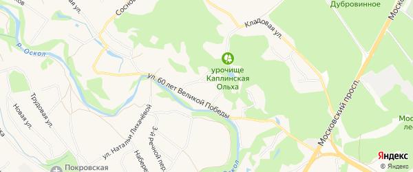 Карта села Каплино в Белгородской области с улицами и номерами домов