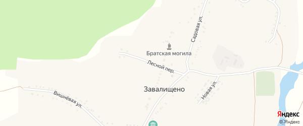 Лесной переулок на карте села Завалищено Белгородской области с номерами домов