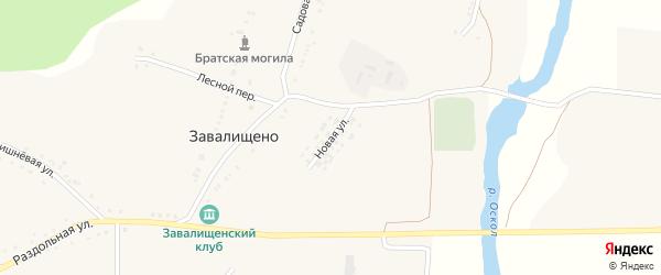 Новая улица на карте села Завалищено Белгородской области с номерами домов