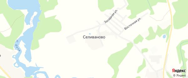 Карта деревни Селиваново в Московской области с улицами и номерами домов